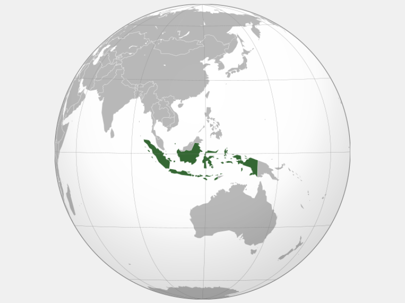Republic of Indonesia locator map