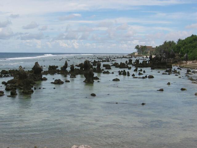 Coral reef on Nauru image