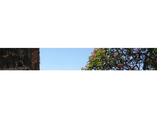 Fort Oranje banner page banner