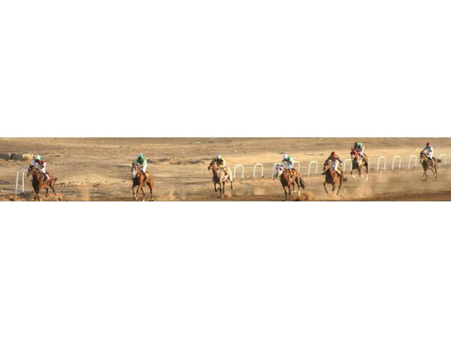 Khartoum banner Horse racing page banner