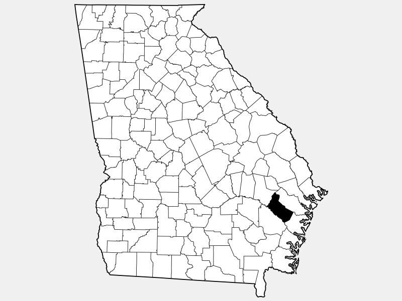 Long County location map