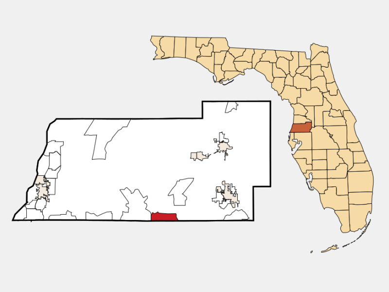 Wesley Chapel locator map
