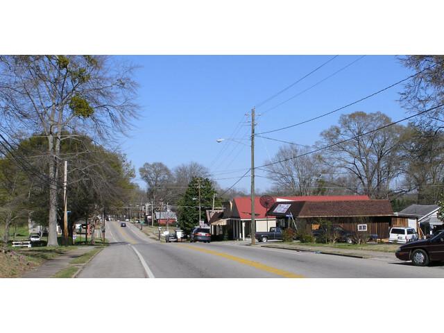 HomerGeorgiaDownTownMainStreet image