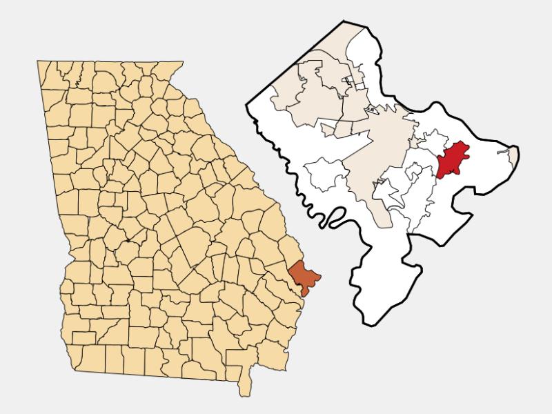 Wilmington Island locator map