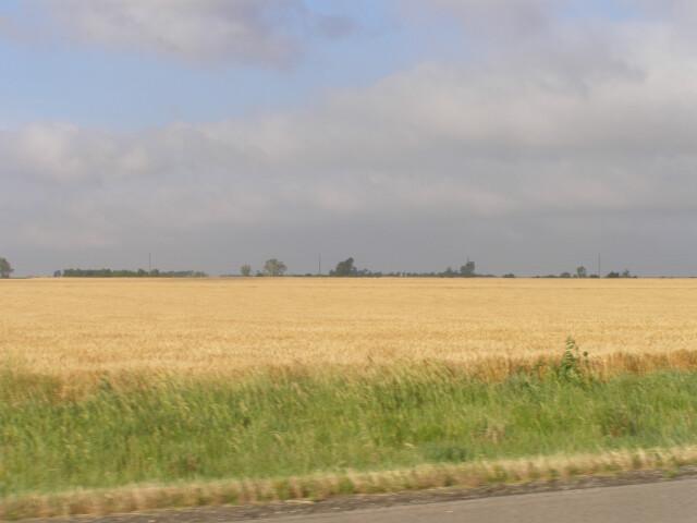 Rice County P5310409 image