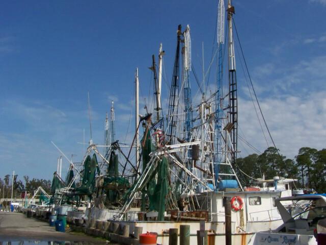 Shrimpboats image