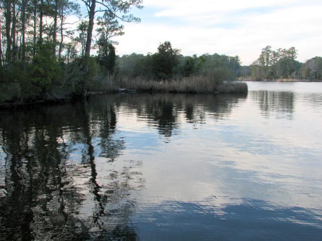 Reflection Goose Creek SP NC 8654 image