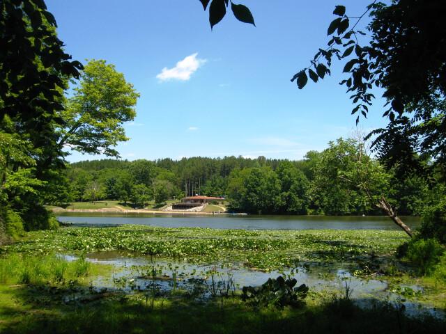 Blue Rock State Park Cutler Lake beach image