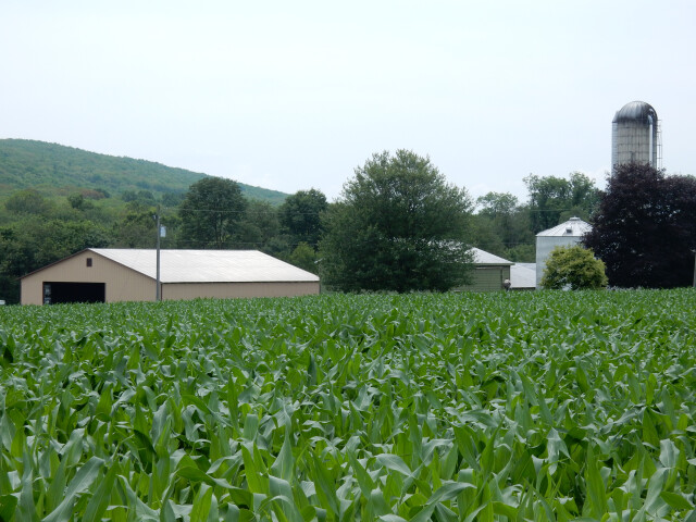 Farm on Valley Rd  Walker Twp  Schuylkill County PA 01 image