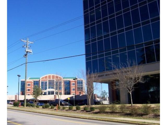 Lexington  South Carolina Courthouse image