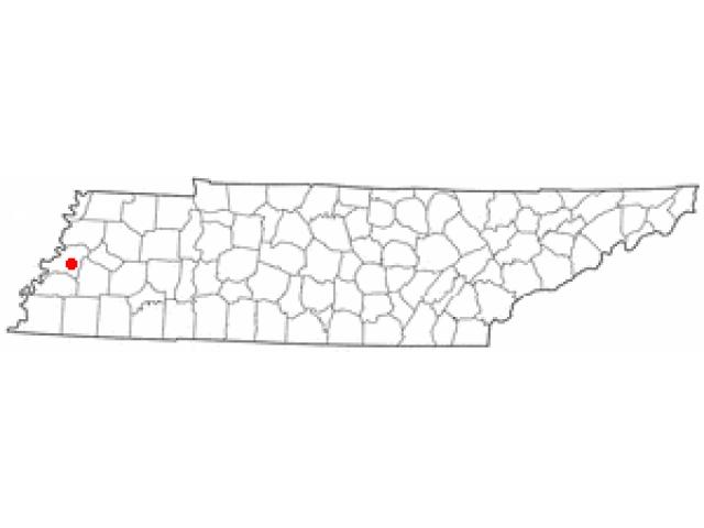 Ripley locator map