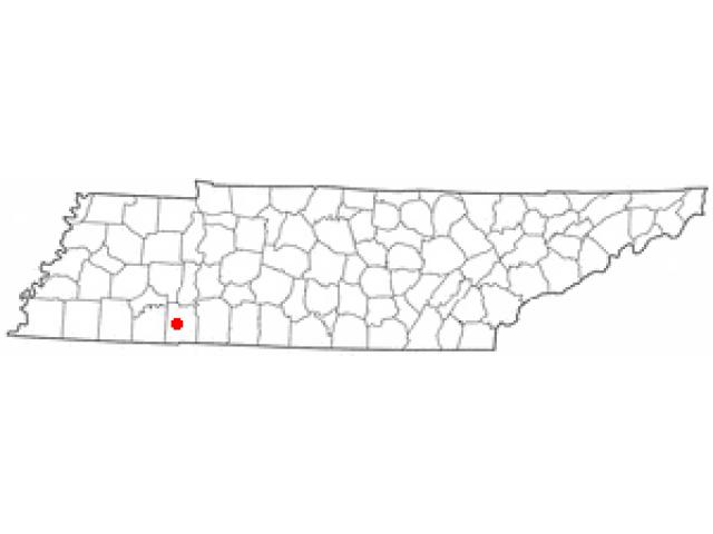 Savannah locator map