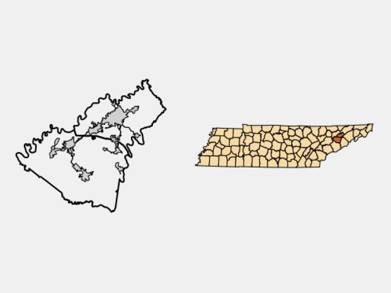 White Pine locator map