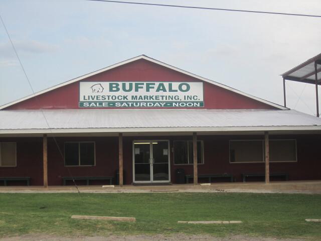 Buffalo  TX  Auction Barn IMG 2296 image