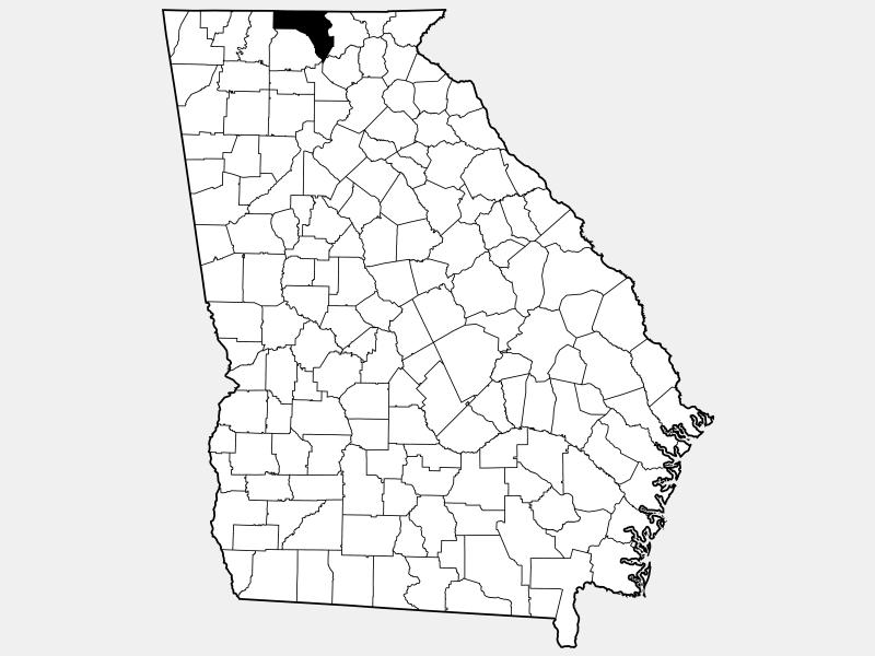 Fannin County locator map