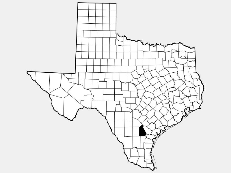 Live Oak County locator map