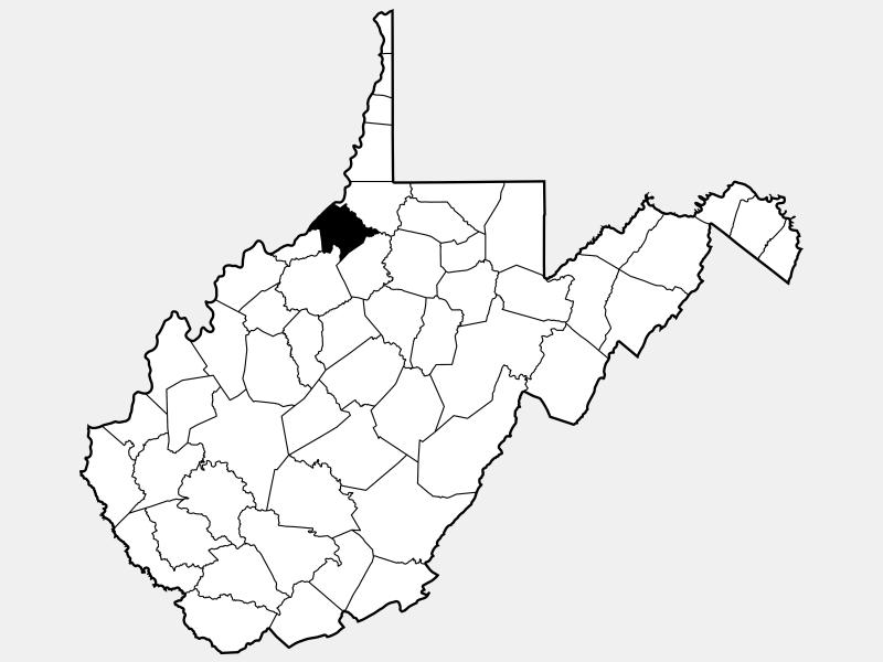 Tyler County locator map