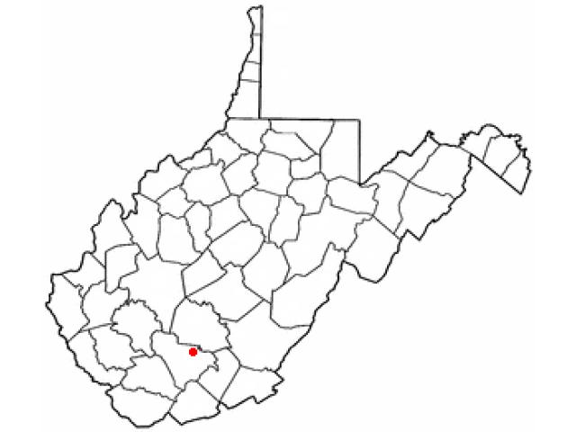 Piney View locator map