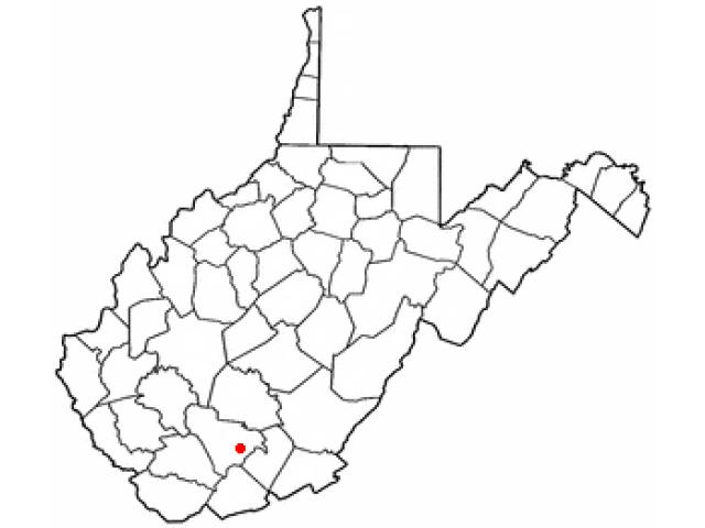 Shady Spring locator map