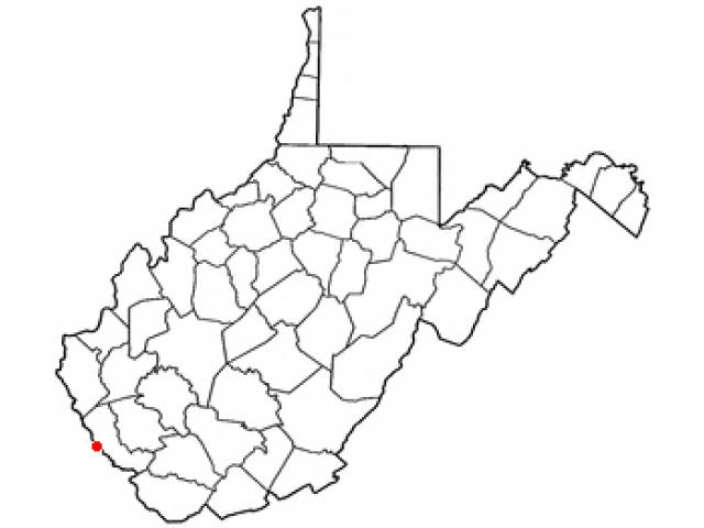 Williamson locator map