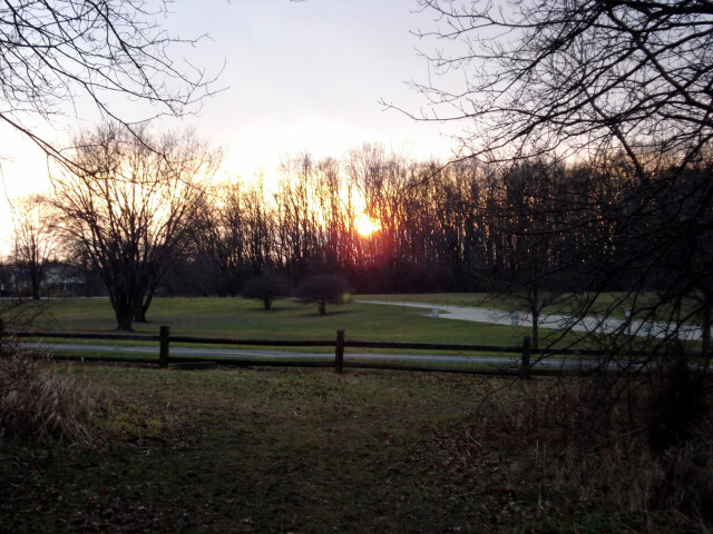 Deer grove sunset image