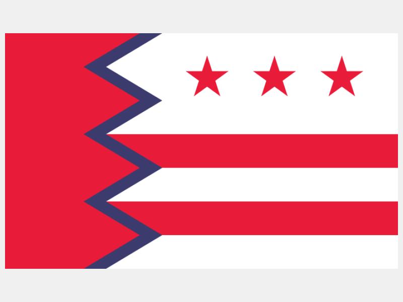 Flag of Washington  Maine flag image