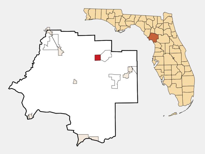 Bronson locator map