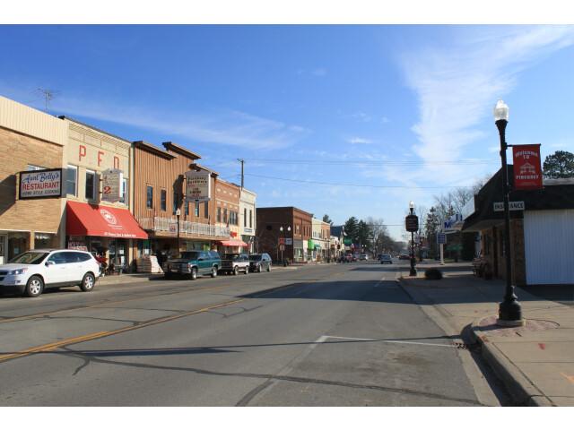 Downtown Pinckney Michigan Main Street image