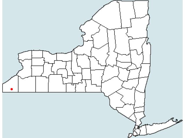 Jamestown, NY locator map