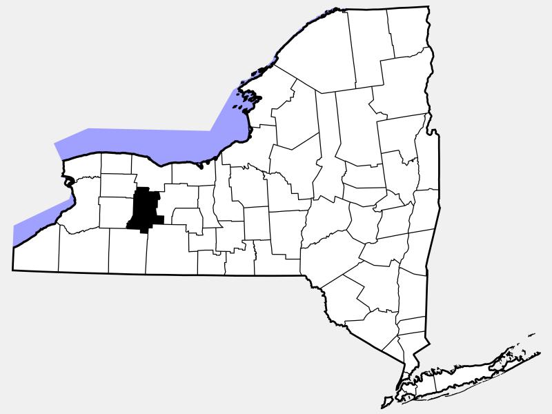 Livingston County location map