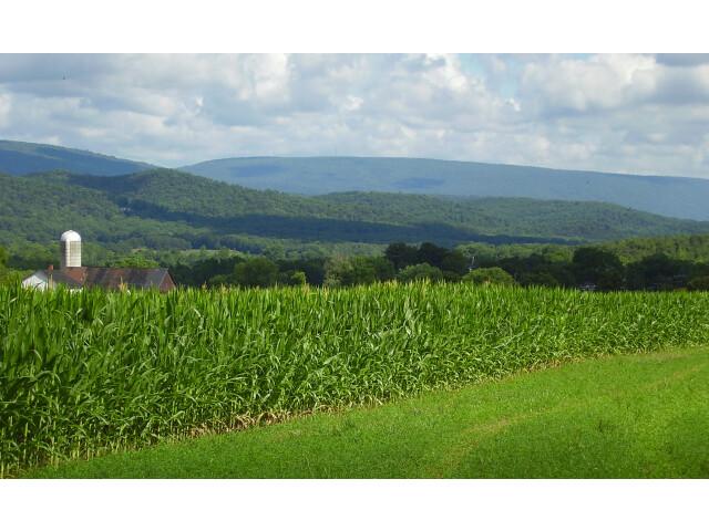Jacks Mountain as viewed from Shirleysburg  Pennsylvania image