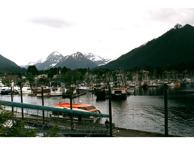 Sitka Harbor image