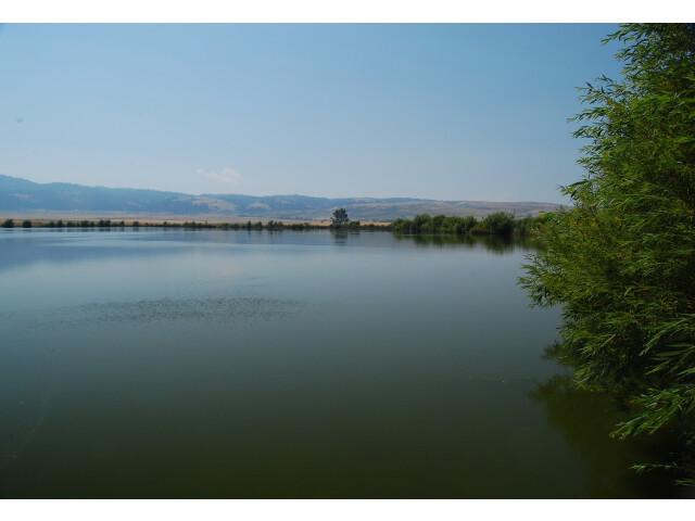 Tolo-lake-idaho-august-2010-roger-peterson-006 '5623157536' image