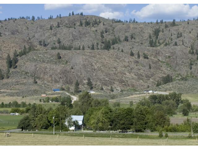 Outcropping near Riverside WA image
