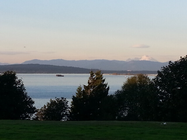 View of Puget Sound from Harborview Park image