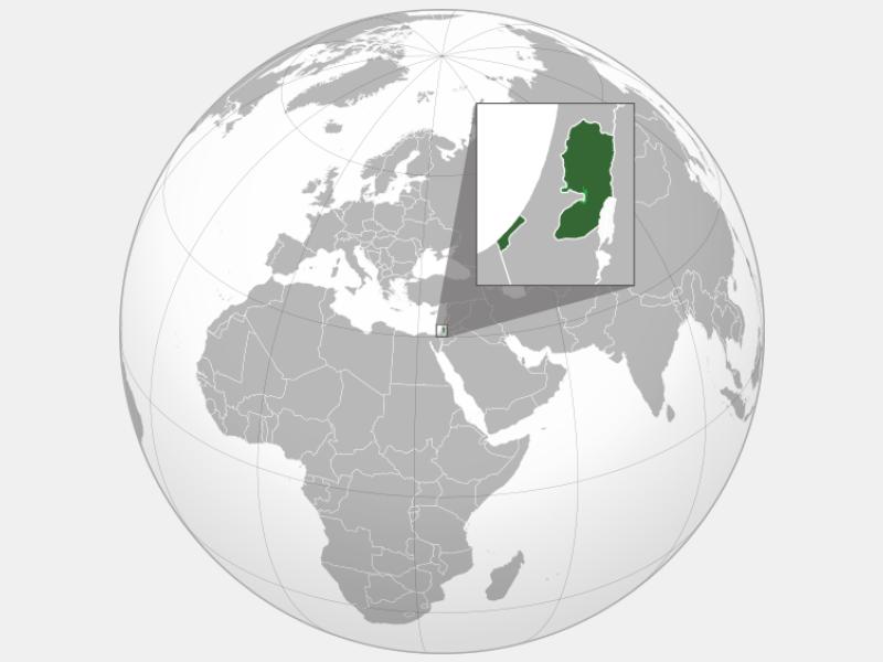 Palestine locator map